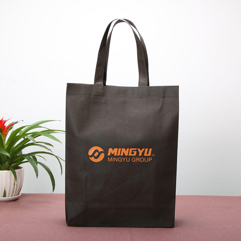 Non Woven Bags Wholesale Polypropylene spunbond nonwoven bags with many colors