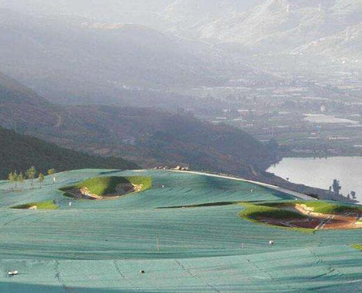 Ming Yu Array image10