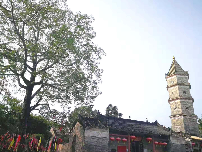 Ming Yu Array image167