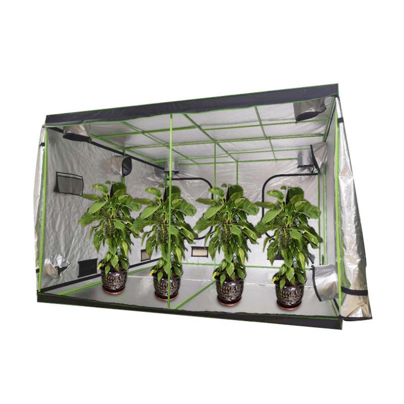 Best seller custom mini greenhouse hydroponic weed growbox indoor for sale indoor plant growing garden