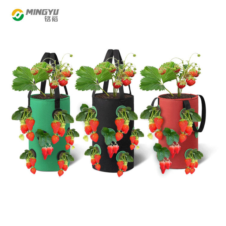 5 7 10 Gallon breathable thicken heavy duty strawberry plants grow bag