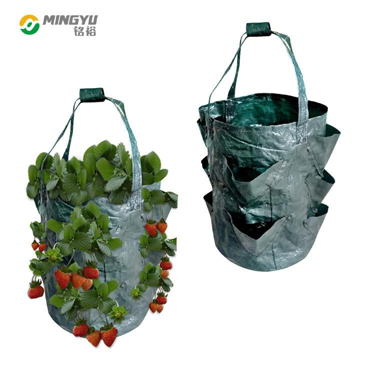 PE nonwoven fabric strawberry grow bags